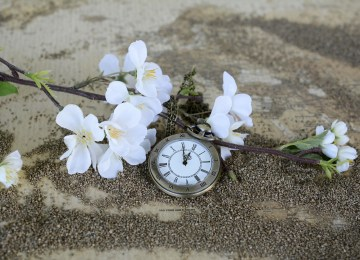 Chroniques anglaises #8 : Donner de son temps