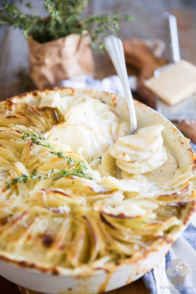 Creamy, dreamy, melt-in-your-mouth Scalloped Potatoes made super elegant thanks to a simple twist. Perfect for any occasion, they are guaranteed to please!
