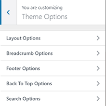 BizPlus: Theme Option