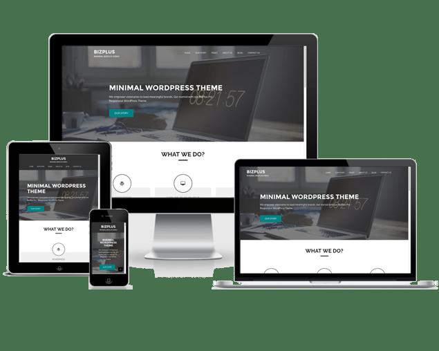 BizPlus - eVision Themes Store