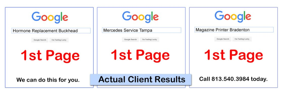 Search Engine Optimization (SEO) Consulting Services