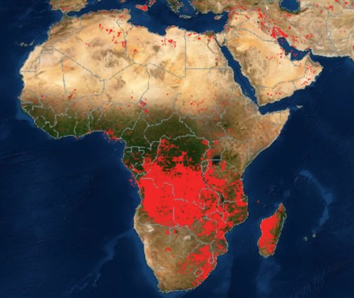 пожары по всему миру, пожары в Африке и на Ближнем Востоке, карта пожаров по всему миру, карты пожаров по всему миру