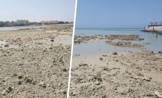 В Хургаде туристы были напуганы резким уходом воды и оголением дна пляжей