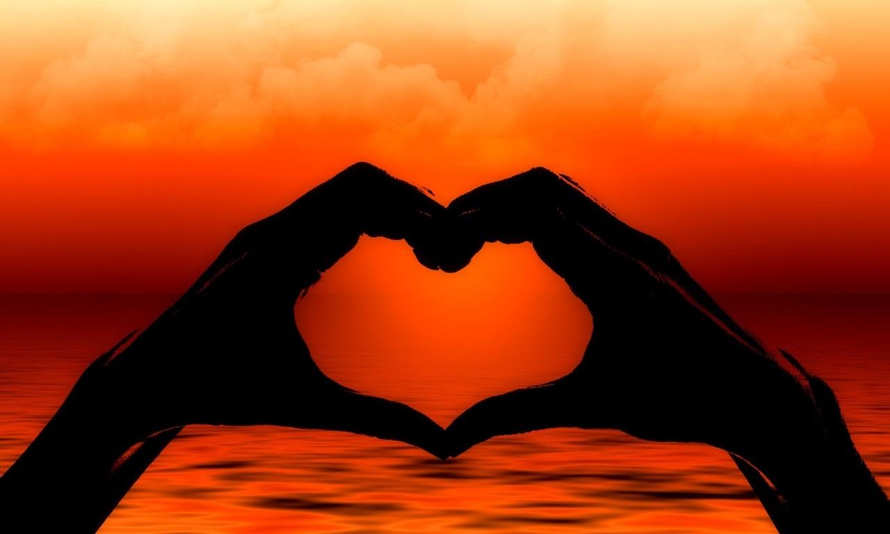 En este momento estás viendo El Corazón: nuestro cerebro principal