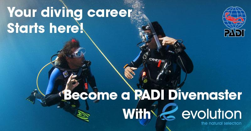 padi divemaster evolution diving resort philippines