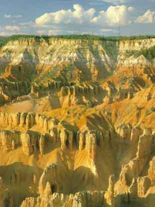 που χρησιμοποιείται για τον προσδιορισμό της ηλικίας ενός απολιθώματος ή ενός βράχου