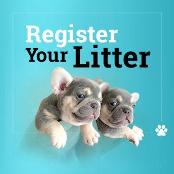 Online Litter Registration