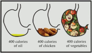 Not-all-Calories-are-Equal