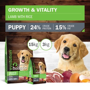 DOG Growth and Vitality