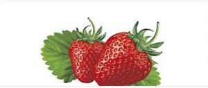 Líquido Importado - Joyetech - Strawberry