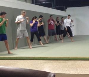 Martial Arts, Adults – Evolve All