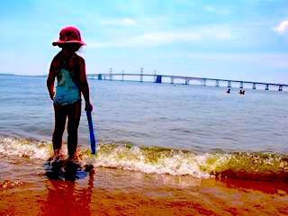 Heath Risk of Swimming in the Chesapeake Bay