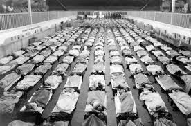 Rows of sick 1 - Rows of sick
