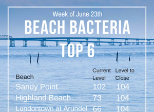 Bay Swimming This Week: Latest Bacteria Report