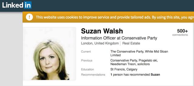 Suzan Walsh Conservative Party LinkedIn