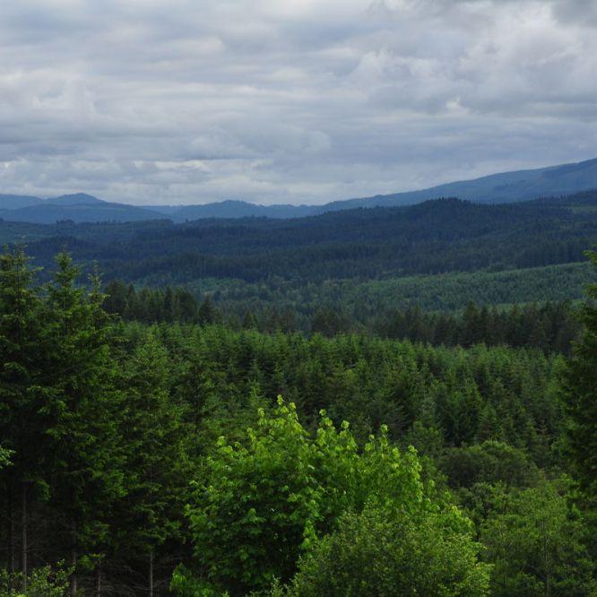 Oregon Mountains L.L. Stub Stewart State Park