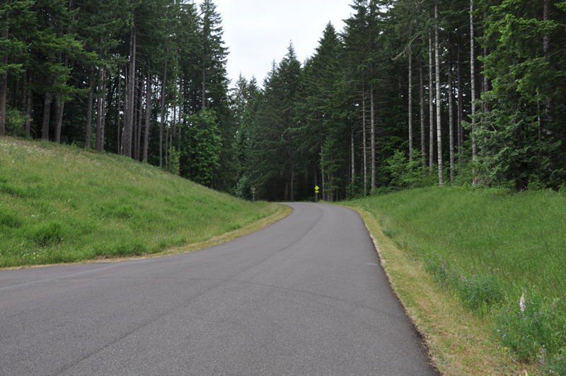 The long uphill road leading into LL Stub Stewart State park in Oregon on our full time RV living adventure.