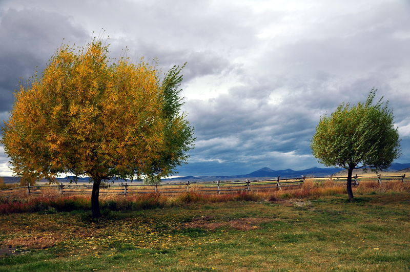 A view from Countryside RV Park with the trees changing colors and dramatic clouds in the background while we travel the country in our RV.