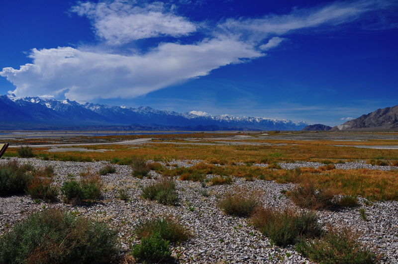 Eastern Sierra Nevada Mountains in the background with Owens Lake in the foreground.