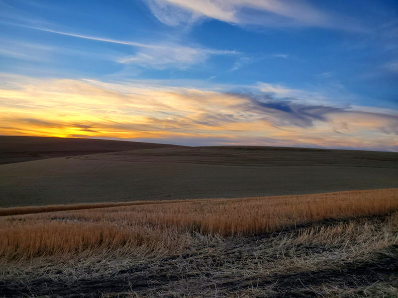 Sunsets during the Eastern WA wheat harvest never get old.