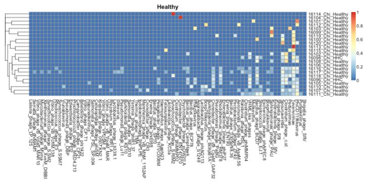 healthy_heatmap