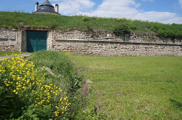 Золочевский замок и трава на месте массового захоронения убитых евреев