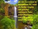 Increde-te in bunatatea lui Dumenzeu !