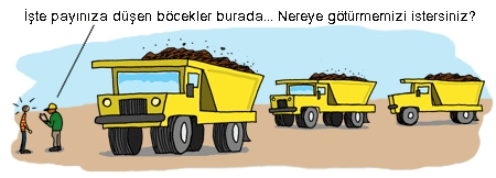 Dumptrucks insects.jpg