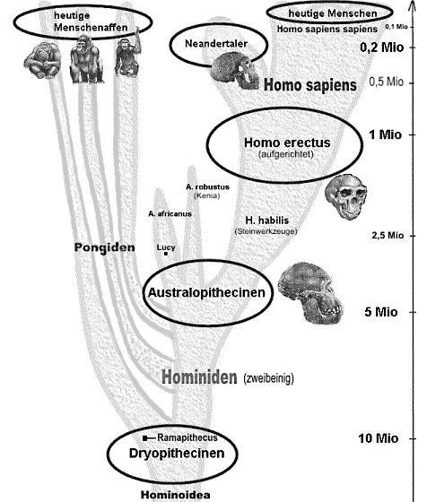 Daten zu Universum und Menschheit / Von Eberhard LIß