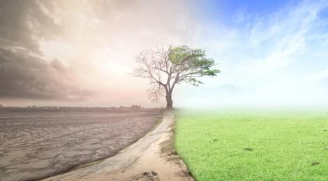Извънредно климатично положение обяви ЕП