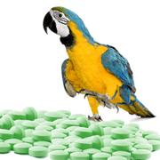 Pharma Übersetzungen