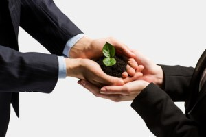 investor relations translation