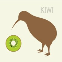 Kiwi - Word of the day - EVS Translations