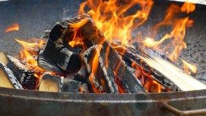 Barbecue - Wort des Tages - EVS Translations