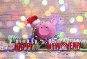 Cochon porte-bonheur – Le mot du jour - EVS Translations