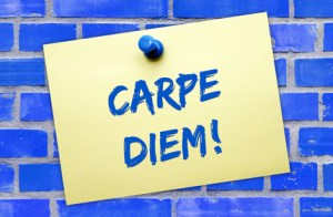 Carpe Diem – Word of the day - EVS Translations