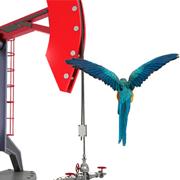 Суров петрол / Crude oil