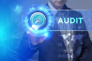 Audit - Word of the day - EVS Translations