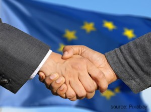 Aktiengesellschaft vs Societas Europaea / SE