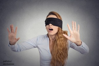 Bird Box – Word of the day – EVS Translations