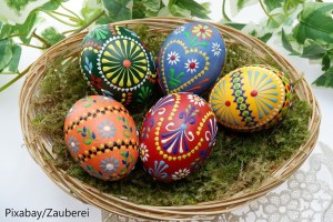 Eggciting – Word of the day – EVS Translations