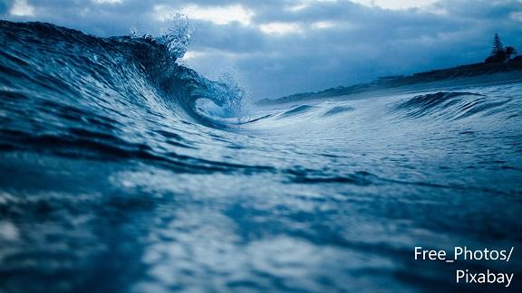 Океан / Ocean – Дума на деня – EVS Translations