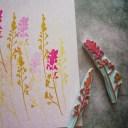 Wild flowers 01 / Kwiaty polne 01