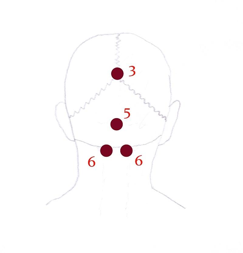 punkty marma głowa