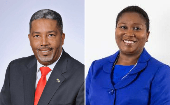 Committee looks to bring local government to the capital