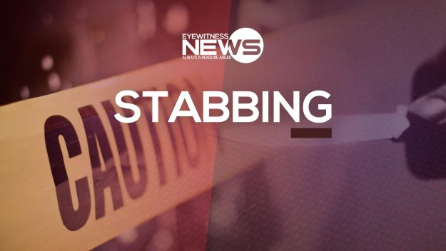 Woman stabbed during altercation