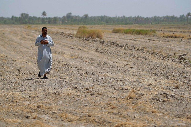 Iraq bans farming summer crops as water crisis grows dire