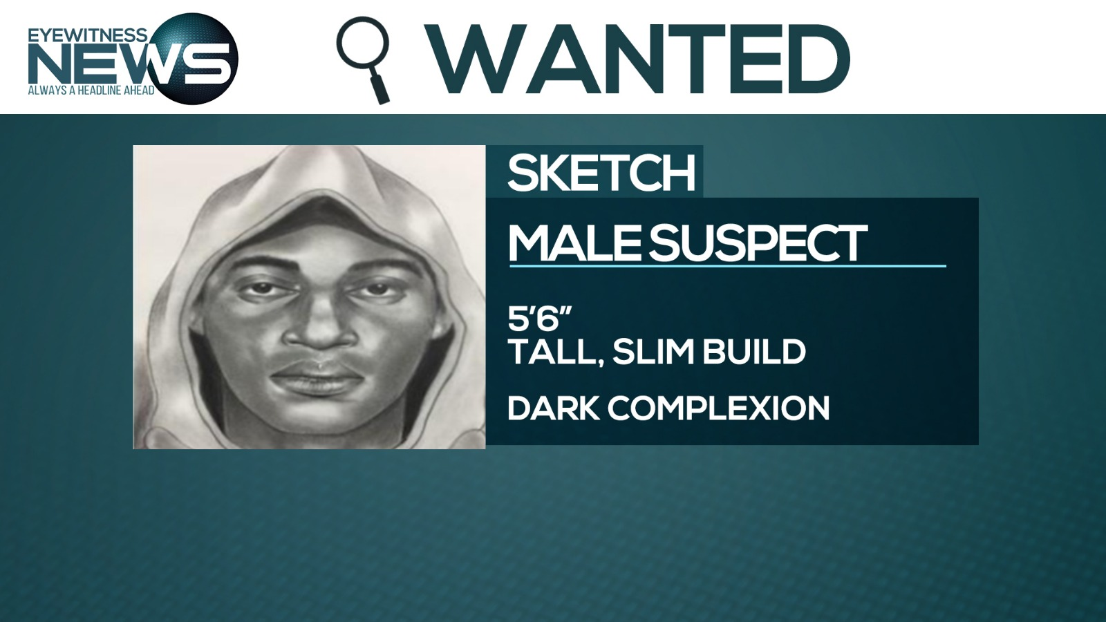 Manhunt underway for alleged armed robbery suspects