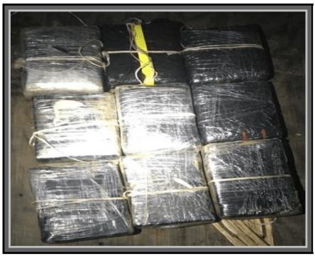 13 arrested for drug possession