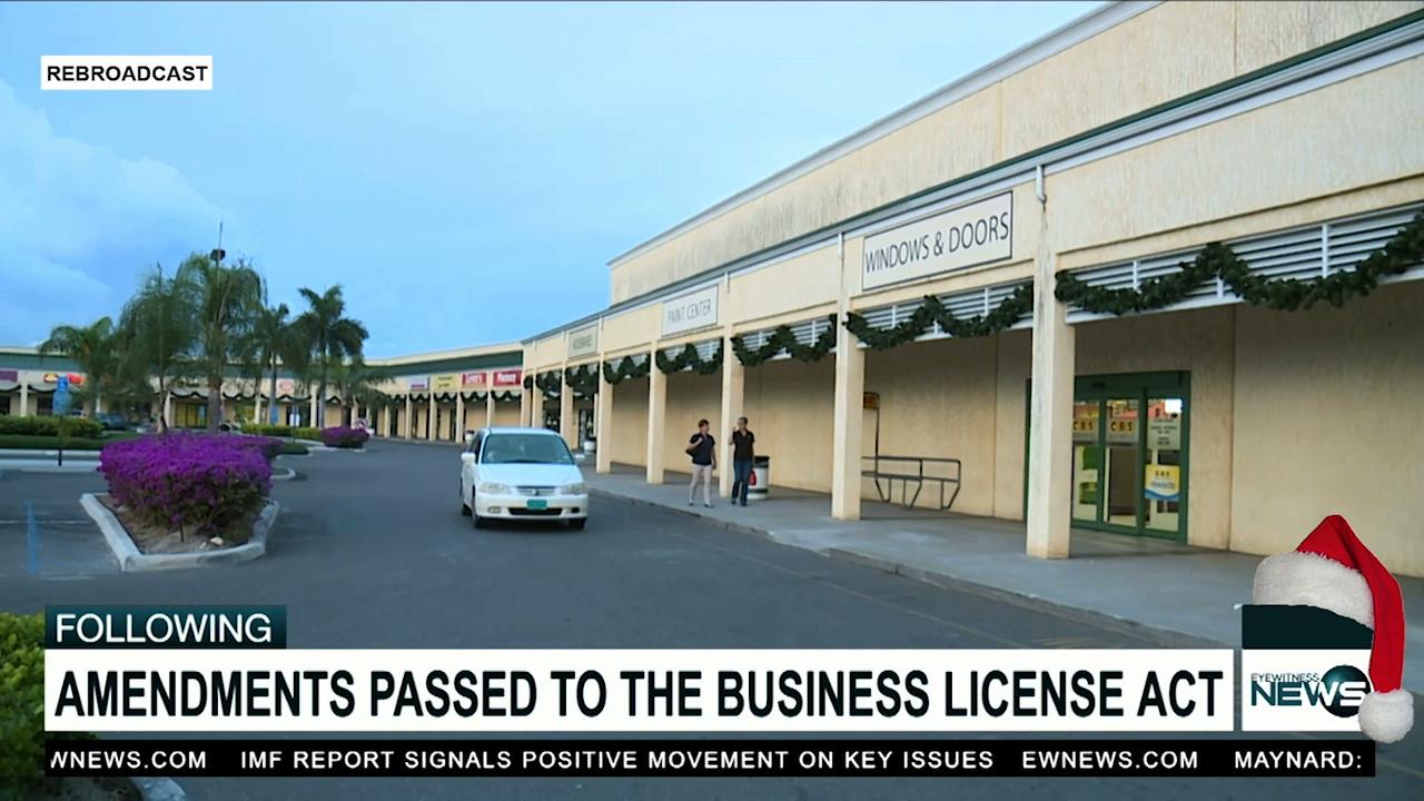 Parliamentarians pass amendment to Business License Act